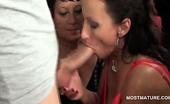 Mature hotties on knees giving blowjobs in hot group sex