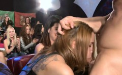 Chicks are taking turns engulfing stripper's cock