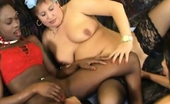 black euro pussy fucks horny bbw in this interracial