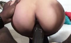 dark haired slut giving head to black monster cock