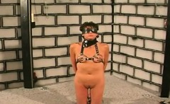Hot brunette juggie enjoys boobs bondage punishment