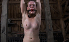 Gagged hotty with clamped nipps gets wild enjoyment